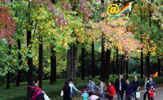 In pics: Maple leaves in Kunming Botanical Garden enchant citizens