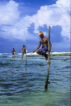 Stilt Fishing in SriLanka: