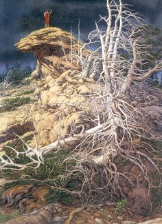 """Bev Doolittle """"PRAYER FOR THE WILD THINGS"""" . 26 Species represented by 34 animals and birds are in this picture"""