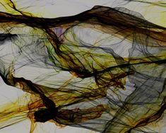 Aurora by Eno Henze.