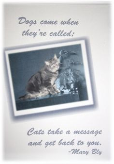 TAKE A MESSAGE by PictureMemories on Etsy, $4.99