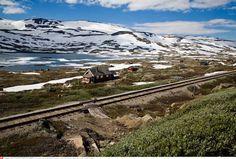 Check out this slideshow Beautiful Hiking and Reindeer Spotting in Finse, Norway in this list Slow Travel: Inspiring Train Journeys Slow Travel, Ways To Travel, Travel Stuff, Holidays In Norway, Vikings Time, Train Route, Train Trip, Beautiful Norway, Places Worth Visiting