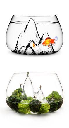 GlasScape fishbowl / terrarium :: Award-winning design, hand blown