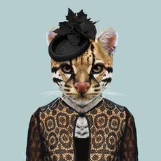 Zoo portraits by Yago Partal, Ocelot, Leopardus Pardalis