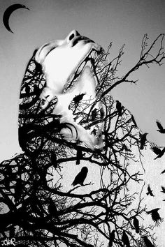 Don't Look Down Art Print by Loui Jover Monochrome Photography, Creative Photography, Art Photography, Grunge Photography, Double Exposure Photography, Black And White Pictures, Surreal Art, Art Prints, Canvas Prints