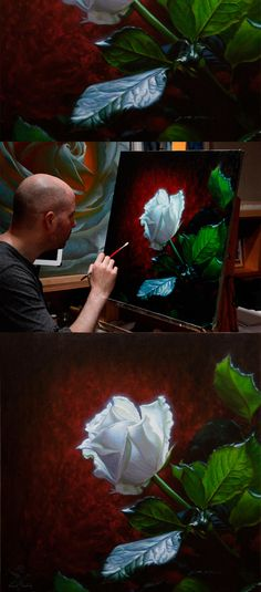 White rose on red, oil painting by Vincent Keeling. www.vincentkeeling.com