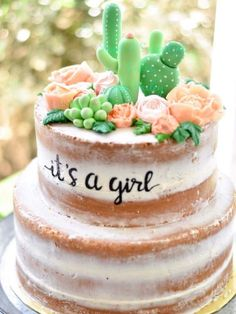Cactus cake for girls baby shower