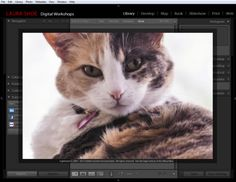 Lightroom Tip of the Week: Change Your Lightroom 5 Splash Screen!