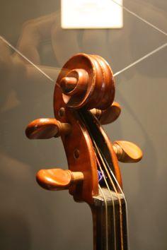 Sala strumenti musicali - dettaglio del ricciolo di un classico violino