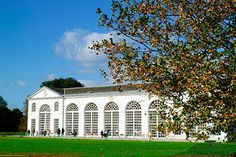 Visit to Kew Gardens and Palace with Cream Tea for Two - £20 each