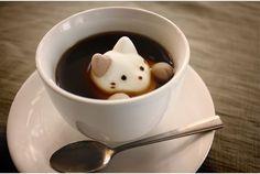 Marshmallow Cats  コーヒータイムも甘くて可愛い猫といっしょ Coffee Is Life, Coffee Time, Coffee Art, Coffee Shop, Most Popular, Hedgehog, Kitty, Amazing, Cute