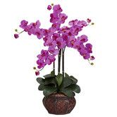 Wayfair $70 Phalaenopsis with Decorative Vase Silk Flower Arrangement