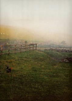 Scottish landscape, Scotland, 1981 © Linda McCartney