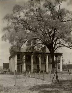 Seven Oaks Plantation in Louisiana circa 1929. Torn down in the 1970s.