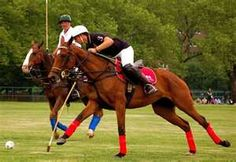 some days i really miss playing polo :( <3