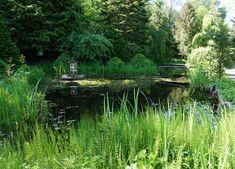 Lisää kukkaloistoa -Ruissalon kasvitieteellinen