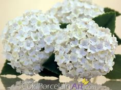 Handcrafted White Hydrangeas by ColdPorcelainArt @Meylah.com