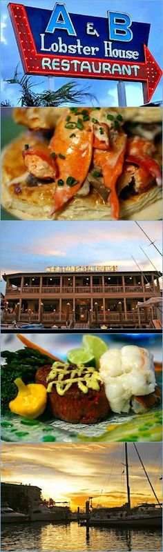 A Key West landmark since 1947, A Lobster House combines the best of traditional Key West dining with the latest in culinary innovation. The atmosphere at Alonzo & Berlin's is elegant, yet comfortable with dining inside and outside on a huge wrap around veranda with views of the Key West Bight, a historic seaport. The amazing sunsets over the Bight compliment any dinner, but set the tone if the evenings intentions are romantic. >>> Read on after the Jump...