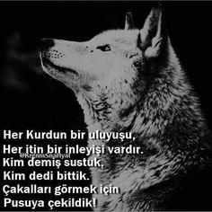 @muratincenett @sahincemuzik @yoruldukbehayat @krgnmsnahayat_official . . #siirsokakta #şiir #siir #kitap #kitapkurdu #şiirheryerde… Wise Quotes, Teen Wolf, Inspire Me, Karma, Texts, Husky, My Photos, 1, Sayings