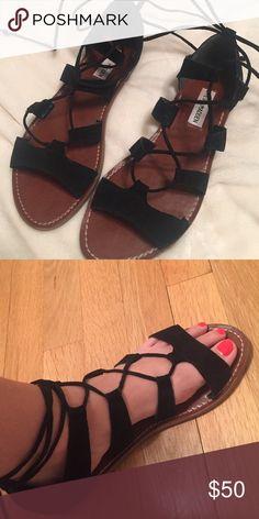 Steve Madden Sanndee Sandal New Steve Madden gladiator sandal -size 8 Steve Madden Shoes Sandals