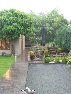 rainy pool