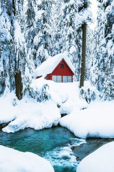 Franklin Falls hike cabin in the snow by Michael Matti Winter Magic, Winter Snow, Franklin Falls, Winter Scenery, Snow Scenes, Winter Pictures, Winter Beauty, Winter Photography, Photography Magazine