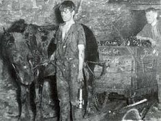 Young Miner with pit pony, East Glasgow