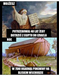 Wtf Funny, Funny Jokes, Hilarious, Russian Jokes, Polish Memes, Funny Mems, Quality Memes, Stupid Memes, Man Humor
