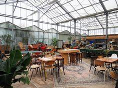 Kweekcafé: koffie en lunch in de kas