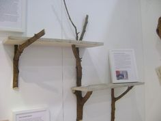 DIY: Decorate Your Home With Tree Branches - http://www.interiordesignwiki.com/architecture/diy-decorate-your-home-with-tree-branches/