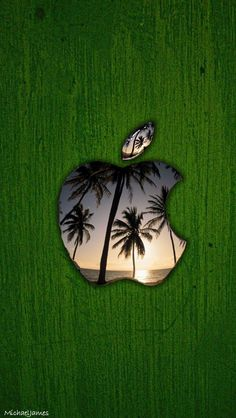 Download Palm Tree Apple 640 x 1136 Wallpapers - 4483136 - Vacation Palm Tree iPhone Beach Sunset | mobile9