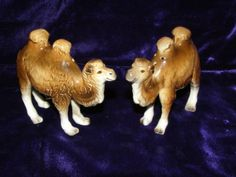 camels that are salt and peppershakers, love it. I want them.