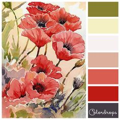 Color palette Red poppies