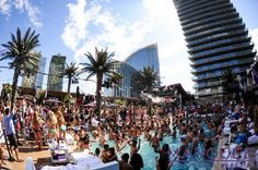 Where to Party In Las Vegas: The Best Clubs and Dayclubs What happens in Vegas stays in Vegas! But I just can't keep the fun to myself. Partying in Vegas is basically the best thing ever. However, there are a TON of clubs in Vegas so it Birthday In Las Vegas, Vegas Party, 21st Birthday, Cabana, Las Vegas Tips, Las Vegas Club, Day Club, Vegas Bachelorette, Viajes