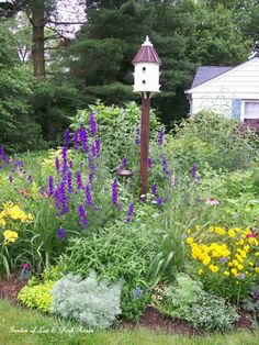 Larkspur accentuates the birdhouse...with butterfly bush, lilies, Caryopteris -