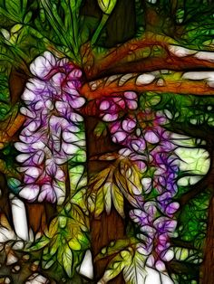 Wisteria Flowers Abstract Photograph  - Wisteria Flowers Abstract Fine Art Print