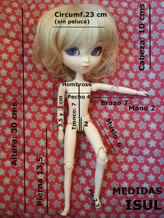 "Isul Measurements (google search - ""1:4 scale fashion doll measurement chart"")"