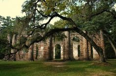 Photo of Old Sheldon Church Ruins by Lisa R.(Sept 2012)