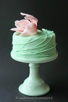 Тайната на нашата вечеря: Зелена тортичка