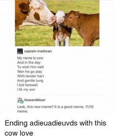 Memes, , and Cow: captain-trashcan   My name is cow   And in the day   Tu wish him well   Wen he go play   With tender hart   And gentle tung   I bid farewell   I lik my son   blueandbluer   Look, this new meme? It is a good meme. 1110   meme  Ending adieuadieuvds with this cow love