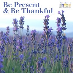Be present & be thankful. #mantra