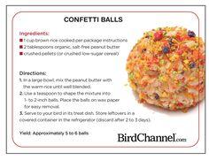 Confetti Balls Peanut Butter Bird Treats They will love it! Parrot Pet, Parrot Toys, Parrot Bird, Parrot Chop, Betta, Parrot Food Recipe, Parakeet Food, Cockatiel Care, Diy Bird Toys