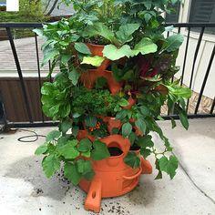 Bio Green Gartenturm und andere Produkte