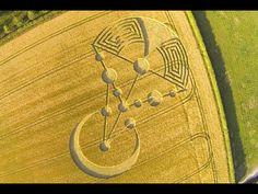 Crop Circles 2014.