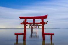 Kaichu Torii, Saga, 海中鳥居, 太良, 佐賀