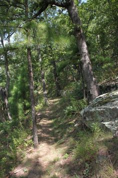Round Top Mountain Trail -- Jasper, AR -- via ExploringNWArkansas.com