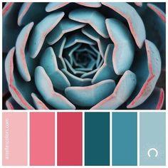 Color Schemes Colour Palettes, Room Color Schemes, Colour Pallette, Color Palate, Room Colors, Color Combos, Bright Color Schemes, Color Stories, Color Theory