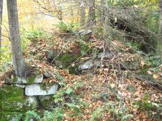 Anderson Furnace (Phipps Furnace) - is along the east bank of Scrubgrass Creek in Clinton Twp., Venango Co., PA http://r2parks.net/Anderson.html