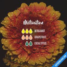 Motivation - Essential Oil Diffuser Blend