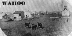 WAHOO, Nebraska - Saunders County - CASDE